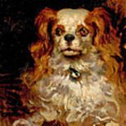 The Duke Of Marlborough. Portrait Of A Puppy Poster