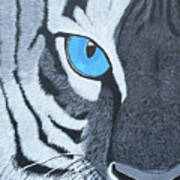 The Eye Of The Tiger Poster