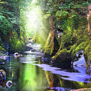 The Fairy Glen Gorge River Conwy Poster