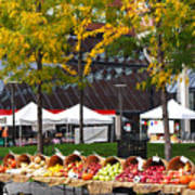 The Fall Harvest Is In Kendall Square Farmers Market Foliage Poster
