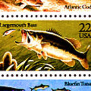 The Fish Stamps Poster by Lanjee Chee