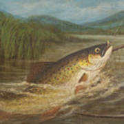 The Fly Fisherman's Net Poster