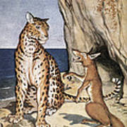 The Fox And The Leopard Poster
