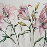 Gentle Flowers Poster
