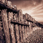 The Groynes At Porlock Weir In Sepia Tones. Poster