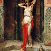 The Harem Beauty Poster