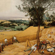 The Harvesters By Pieter Bruegel The Elder                             Poster