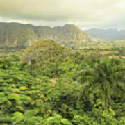 The Hills Of Vinales Poster