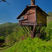 The House On The Tree - La Casa Sull'albero Poster