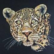 The Jaguar - Acrylic Painting Poster