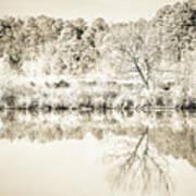 The Lake #47 Poster