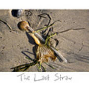 The Last Straw Poster by Peter Tellone