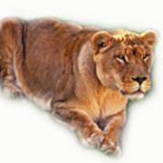 The Lioness - Vignette Poster