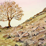 The Lone Sentry-sycamore Gap. Poster