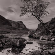 The Lone Tree Of Glencoe Poster