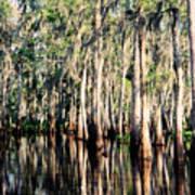 The Louisiana Bayou Poster