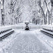 The Mall In Snow Central Park Poster