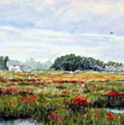 The Marsh In Bloom Poster