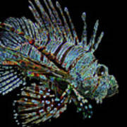 The Mighty Lion Fish Poster