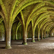 The Monks Cellarium, Fountains Abbey.  Poster