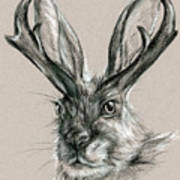 The Mythical Jackalope Poster
