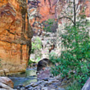The Narrows Of The Virgin River  Poster