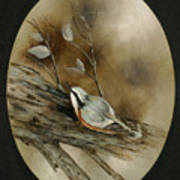 The Nuthatch Poster