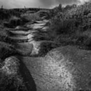 The Old Stone Track Monochrome Landscape Poster