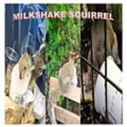 The Original Official Milkshake Squirrel Poster