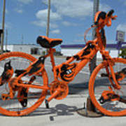 The Orioles Bicycle Poster