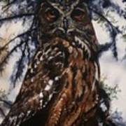 The Owl Poster