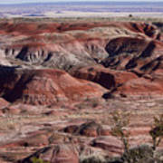 The Painted Desert  8062 Poster