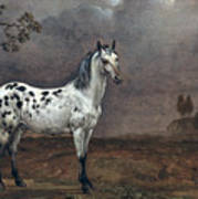 The Piebald Horse Poster