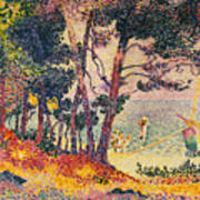 The Pine Wood, Provence Poster