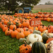 The Pumpkin Farm One Poster