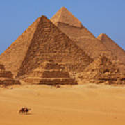 The Pyramids In Egypt Poster
