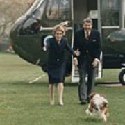 The Reagans Being Greeted By Their Dog Poster