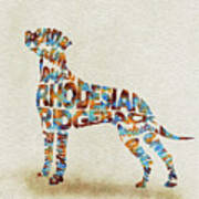 The Rhodesian Ridgeback Dog Watercolor Painting / Typographic Art Poster