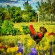 The Rooster's Garden Poster