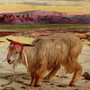 The Scapegoat Poster by William Holman Hunt