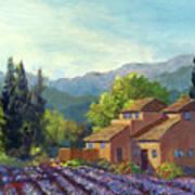 the Season Provence Poster