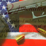 The Second Amendment Poster