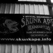 The Skunk Ape Poster