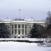 The South View Of The White House Poster by Stacy Gold