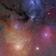 The Starforming Region Of Rho Ophiuchus Poster
