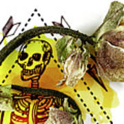 The Still Life With A Winter Rose Flower In A Macabre Style. Poster