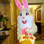 The St.regis Easter Bunny Poster