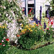 The Tangled Garden Poster