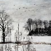 The Tree Poster by Stephanie Calhoun
