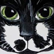 The Tuxedo Cat Poster